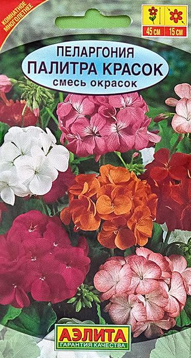Пеларгония Палитра красок (смесь)